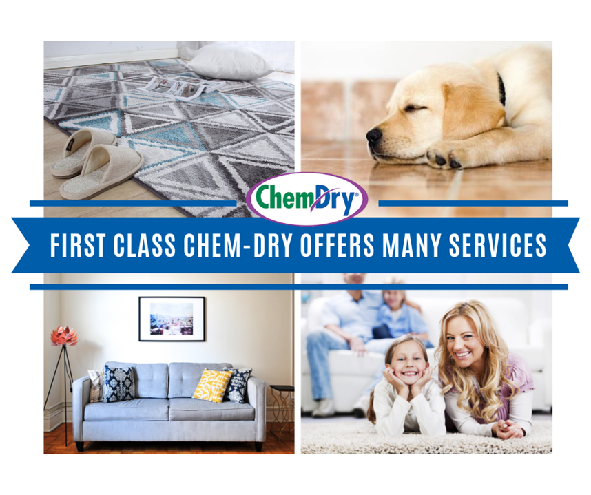 First Class Chem-Dry offers many services including rug cleaning, tile and grout cleaning, upholstery cleaning, carpet cleaning, and pet urine and odor removal in The Villages FL
